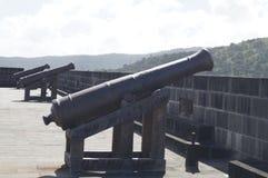 πυροβόλο Στοκ Εικόνες