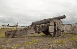 Πυροβόλο Armstrong & x28 1727-1792& x29  - Νησί Βραζιλία μελιού Στοκ εικόνες με δικαίωμα ελεύθερης χρήσης