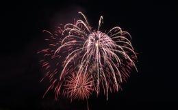 Πυροτέχνημα στο νυχτερινό ουρανό Στοκ φωτογραφία με δικαίωμα ελεύθερης χρήσης