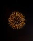πυροτέχνημα χρυσό Στοκ Φωτογραφίες