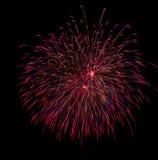 Πυροτεχνήματα ΗΠΑ Στοκ φωτογραφίες με δικαίωμα ελεύθερης χρήσης