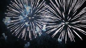 Πυροτεχνήματα που λάμπουν στο νυχτερινό ουρανό απόθεμα βίντεο