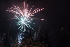 Πυροτεχνήματα στα δέντρα έλατου που καλύπτονται στο χιόνι στοκ εικόνες με δικαίωμα ελεύθερης χρήσης