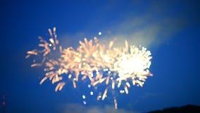 Πυροτεχνήματα στο βαθύ μπλε υπόβαθρο απόθεμα βίντεο