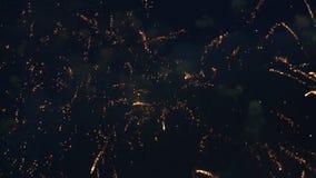 Πυροτεχνήματα στο νυχτερινό ουρανό φιλμ μικρού μήκους