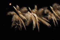 Πυροτεχνήματα στο νυχτερινό ουρανό Στοκ φωτογραφία με δικαίωμα ελεύθερης χρήσης