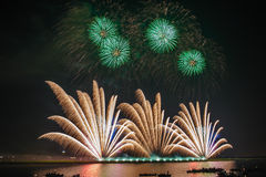 Πυροτεχνήματα φοινικών Στοκ φωτογραφία με δικαίωμα ελεύθερης χρήσης