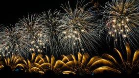 Πυροτεχνήματα VI Στοκ εικόνα με δικαίωμα ελεύθερης χρήσης