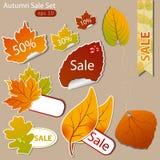 πωλήσεις φθινοπώρου Στοκ φωτογραφία με δικαίωμα ελεύθερης χρήσης