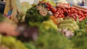 Πωλήτρια που σχεδιάζει τα φρέσκα φρούτα και λαχανικά στην αγορά, λιανικό εμπόριο απόθεμα βίντεο