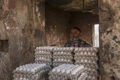 Πωλητής αυγών στην παλαιά οδό του Δελχί Στοκ Εικόνες
