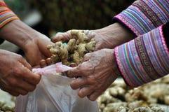 Πωλητής πιπεροριζών σε μια βιετναμέζικη αγορά Στοκ Φωτογραφία