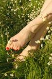 πόδια άνοιξη λουλουδιών Στοκ φωτογραφία με δικαίωμα ελεύθερης χρήσης