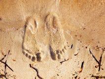 πόδια αμμώδη Στοκ Εικόνες