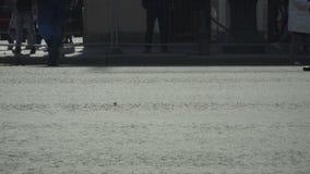 Πόδια ανθρώπων ` s που πηγαίνουν στην οδό απόθεμα βίντεο