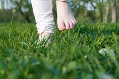 Πόδια γυναικών στην πράσινη χλόη το πρωί στοκ φωτογραφίες