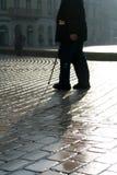 πόδια δύο Στοκ Εικόνες