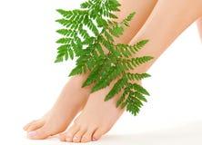 πόδια θηλυκών πράσινων φύλλ& Στοκ φωτογραφίες με δικαίωμα ελεύθερης χρήσης