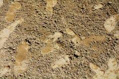 Πόδια ιχνών στην άμμο, υπόβαθρο Στοκ Φωτογραφία