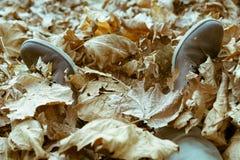 Πόδια τις μπότες που καλύπτονται με στα φύλλα φθινοπώρου στοκ φωτογραφίες