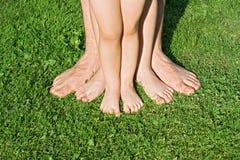 πόδια χλόης στοκ εικόνα με δικαίωμα ελεύθερης χρήσης