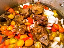 Πόδια Ragu χοιρινού κρέατος στοκ φωτογραφίες