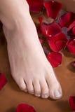 πόδι λουτρών Στοκ Εικόνα