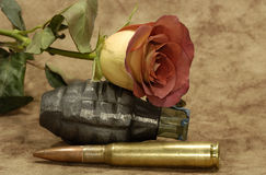 πόλεμος αγάπης Στοκ εικόνα με δικαίωμα ελεύθερης χρήσης