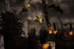 πόλεμος δράκων Στοκ Φωτογραφίες