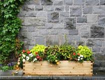Πόλης λουλούδια Στοκ φωτογραφία με δικαίωμα ελεύθερης χρήσης