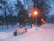 Πόλης πάρκο και χιόνι στον ουρανό βραδιού στοκ εικόνες