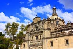πόλη Μεξικό καθεδρικών ναών Στοκ Εικόνες