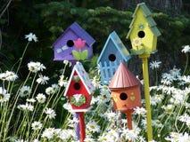 πόλη πουλιών Στοκ Εικόνα