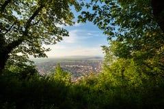 Πόλη που βλέπει μέσω ενός ανοίγματος των δέντρων στοκ εικόνα