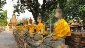 πόλη του Βούδα ayutthaya παλαιά Στοκ εικόνα με δικαίωμα ελεύθερης χρήσης