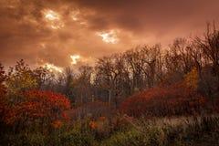 Πόλη του Μόντρεαλ το φθινόπωρο Κεμπέκ, Καναδάς στοκ φωτογραφία με δικαίωμα ελεύθερης χρήσης
