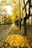 πόλη φθινοπώρου Στοκ Εικόνες