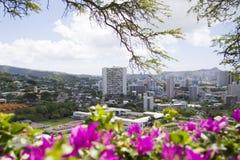 πόλη Χαβάη Στοκ Εικόνες