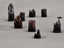 πόλοι παραλιών ξύλινοι στοκ εικόνες με δικαίωμα ελεύθερης χρήσης