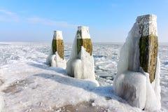Πόλοι στυλίσκων που καλύπτονται με το χιόνι και τον πάγο Στοκ εικόνες με δικαίωμα ελεύθερης χρήσης