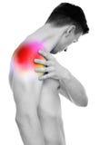 Πόνος ώμων - αρσενικός ώμος εκμετάλλευσης ανατομίας που απομονώνεται στο λευκό στοκ εικόνες