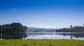 Πόνος ung, αντανάκλαση του δέντρου πεύκων σε μια λίμνη Στοκ Εικόνες