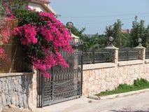 Πόρτα γκαράζ με το bougainvillea στοκ φωτογραφία με δικαίωμα ελεύθερης χρήσης