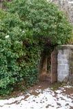 Πόρτα εισόδων στο πάρκο, με τα ίχνη χιονιού στο έδαφος Στοκ Εικόνα
