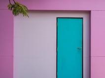 πόρτα μεντών και πορφυρός τοίχος Στοκ εικόνες με δικαίωμα ελεύθερης χρήσης