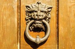 Πόρτα με τα ρόπτρα ορείχαλκου με μορφή ενός lion& x27 κεφάλι του s, όμορφο στοκ φωτογραφίες