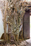 Πόρτα σε μια αίθουσα δερματοστιξιών χίπηδων στην Ταϊλάνδη Στοκ φωτογραφίες με δικαίωμα ελεύθερης χρήσης