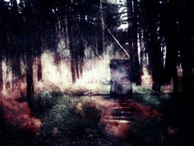 Πόρτα στο δάσος Στοκ Εικόνες