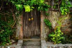 πόρτες Στοκ Φωτογραφίες