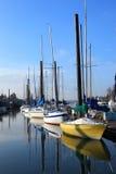 Πόρτλαντ sainboats Στοκ φωτογραφίες με δικαίωμα ελεύθερης χρήσης